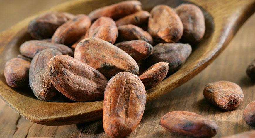 Fave di Cacao essiccate