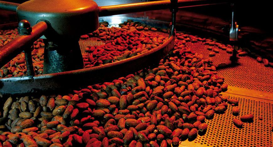 Torrefazione delle fave di cacao